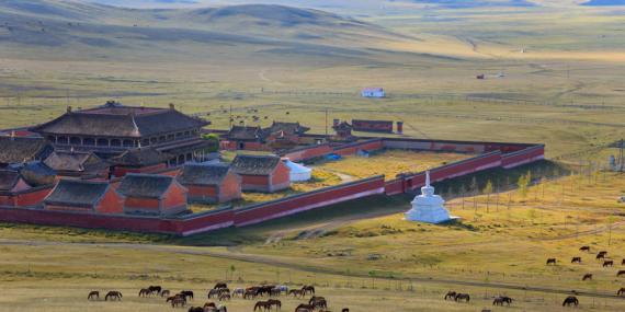 Voyage en Mongolie - Agence de Voyage Locale Wind of Mongolia