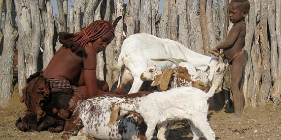 Voyage en Namibie - Agence de Voyage Locale Grandeur Nature Safaris