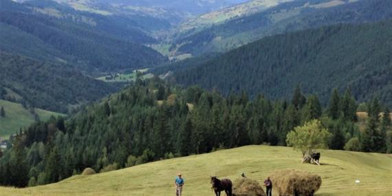 Voyage en Roumanie - Agence de Voyage Locale Explore Romania