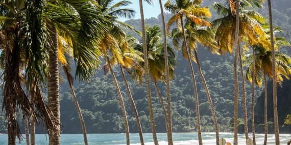 Voyage à Trinité et Tobago - Agence de Voyage Locale Vamos!