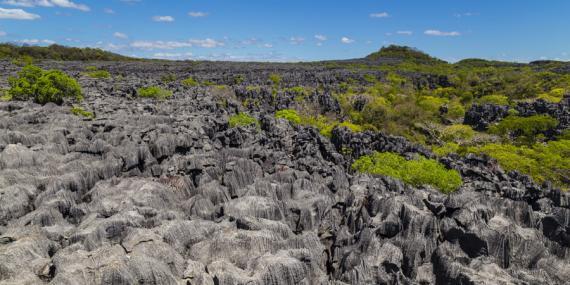 Voyage à Madagascar - Agence de Voyage Locale Malagasya Travel