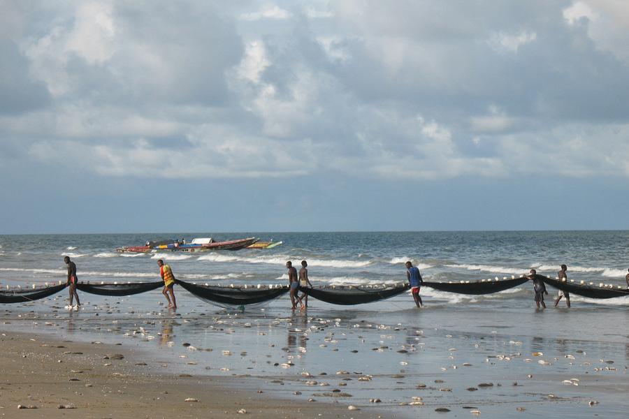 Sénégal - La Casamance, promenade dans le grenier du Sénégal