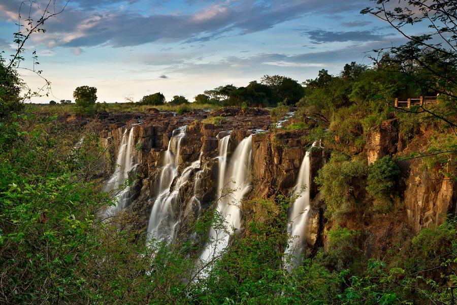 Zambie - Les Chutes de la Démesure