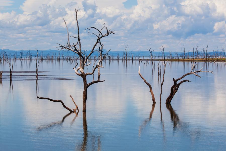 Zimbabwe - Triade de Parcs Nationaux au Zimbabwe