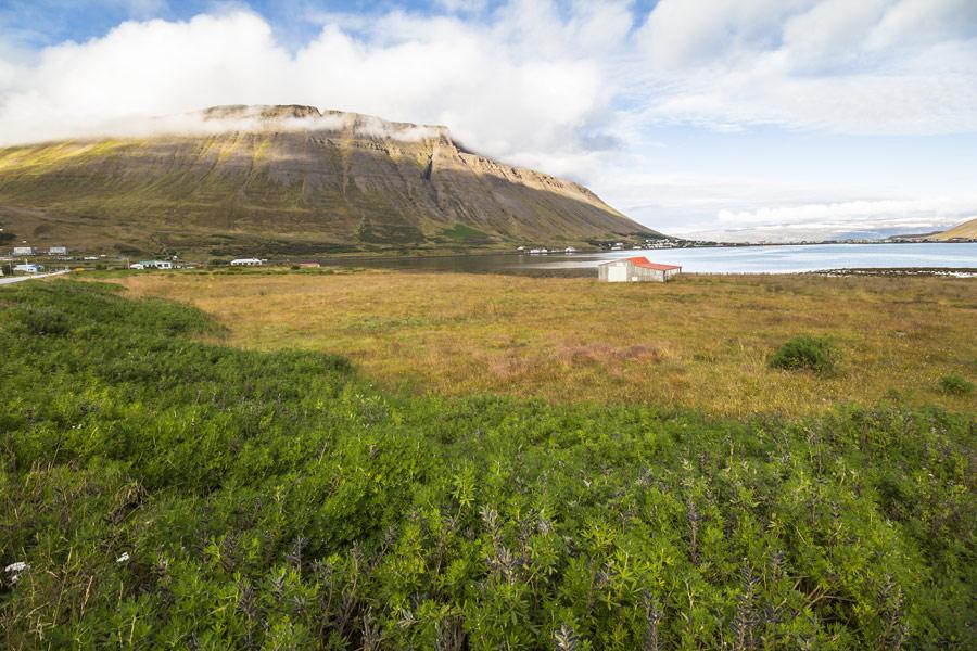Islande - Croisière; une autre façon de découvrir la Terre de Glace