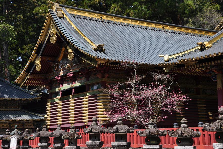 Japon - Nikko, un écrin de verdure aux portes de Tokyo