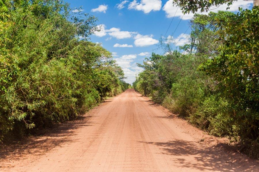 Argentine - Excursion aux Esteros del Ibera