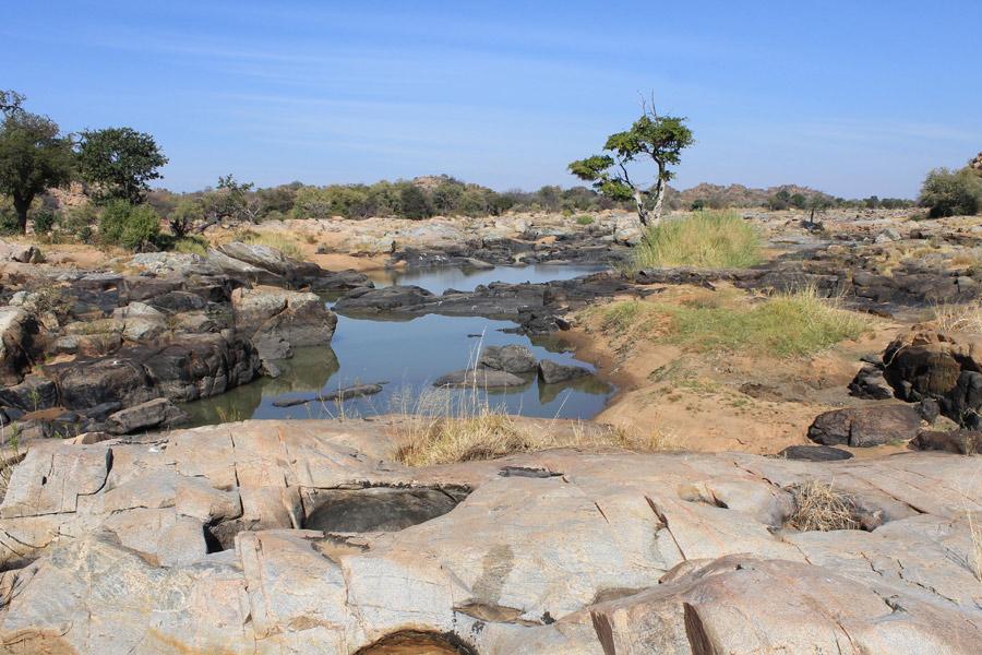 Botswana -Wild At Tuli