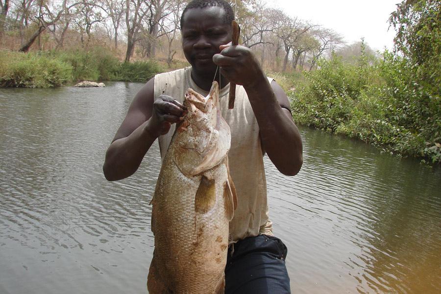 Cameroun - Pêche Sportive et Petits Hommes de la Forêt