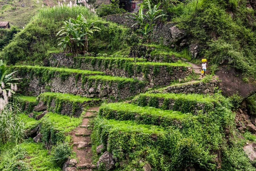 Cap-Vert - Randonnées au carrefour de trois continents à Santo Antão