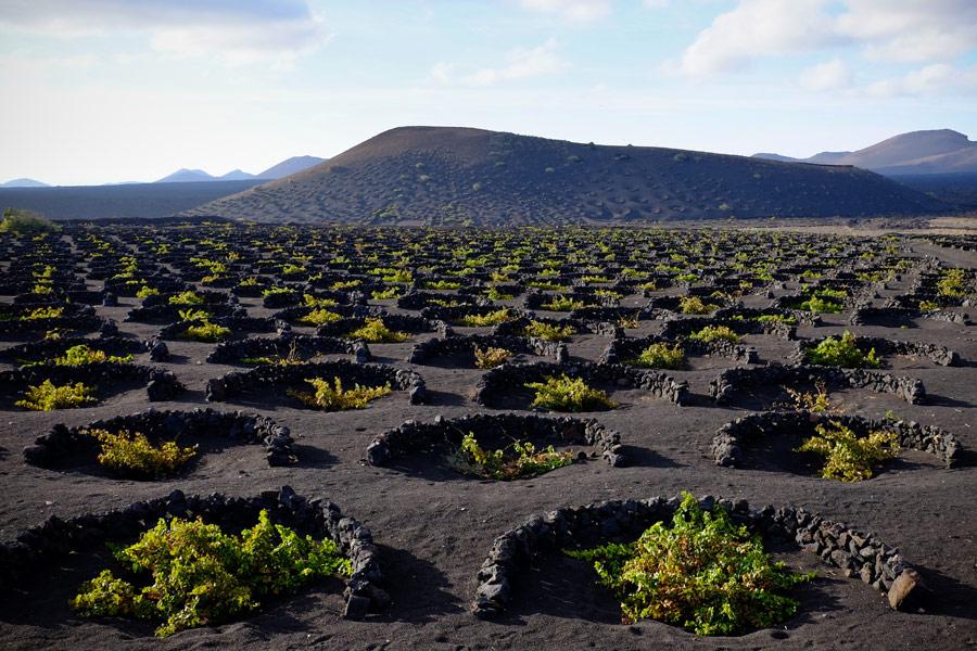 Iles Canaries - Lanzarote, l'île aux volcans
