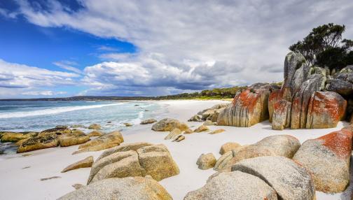 Tasmanie - à la découverte de l'île australienne oubliée
