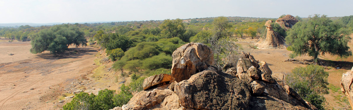 Voyage Découverte au Botswana -Wild At Tuli