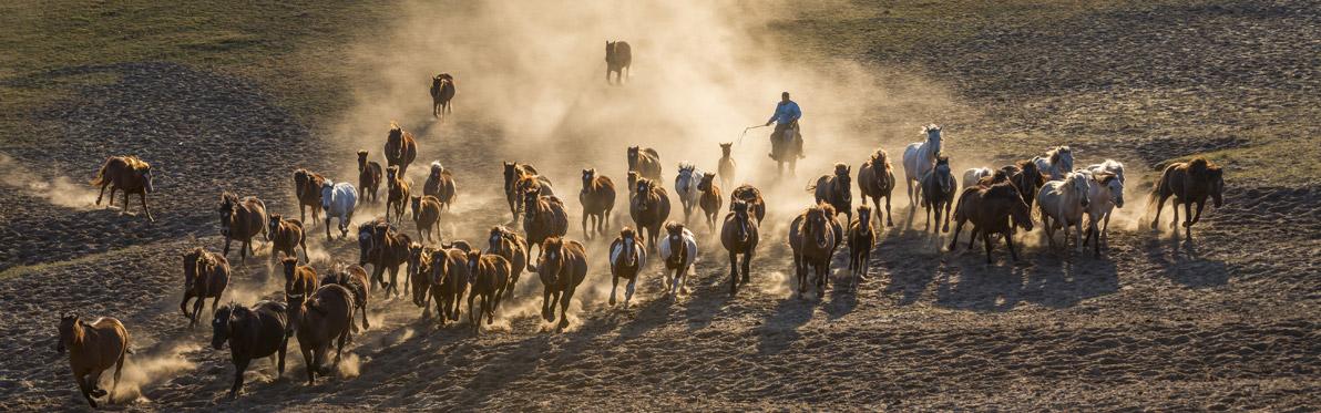 Voyage découverte en Chine - Les Grands Espaces de la Mongolie Intérieure