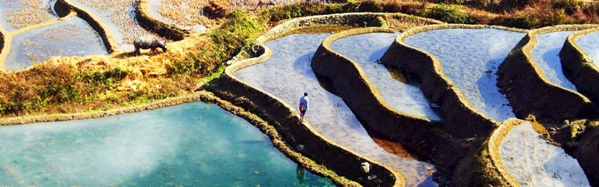Voyage Découverte en Chine - Les Rizières en Terrasses de Yuanyang