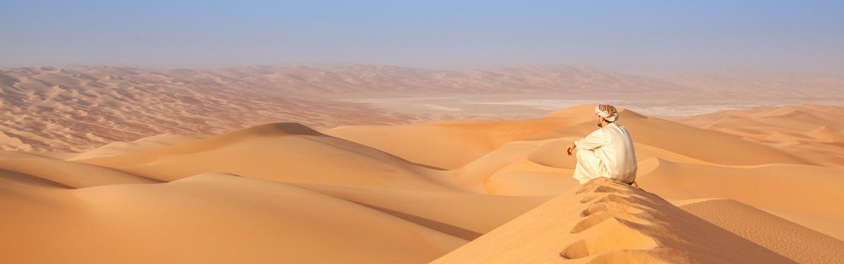Voyage Découverte aux Emirats Arabes Unis