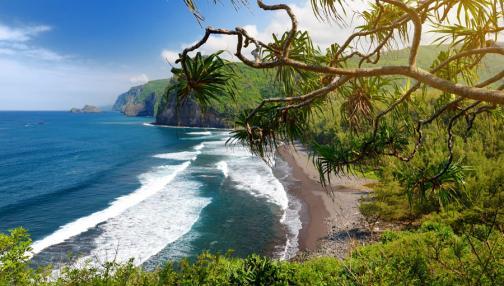 Volcans, plages et traditions sur Big Island