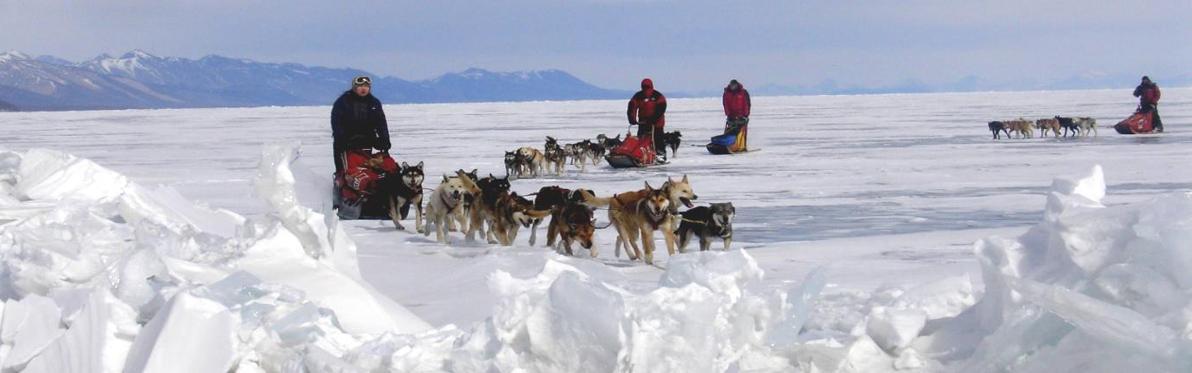 Voyage découverte en Mongolie -... Aventure en traîneau à chiens