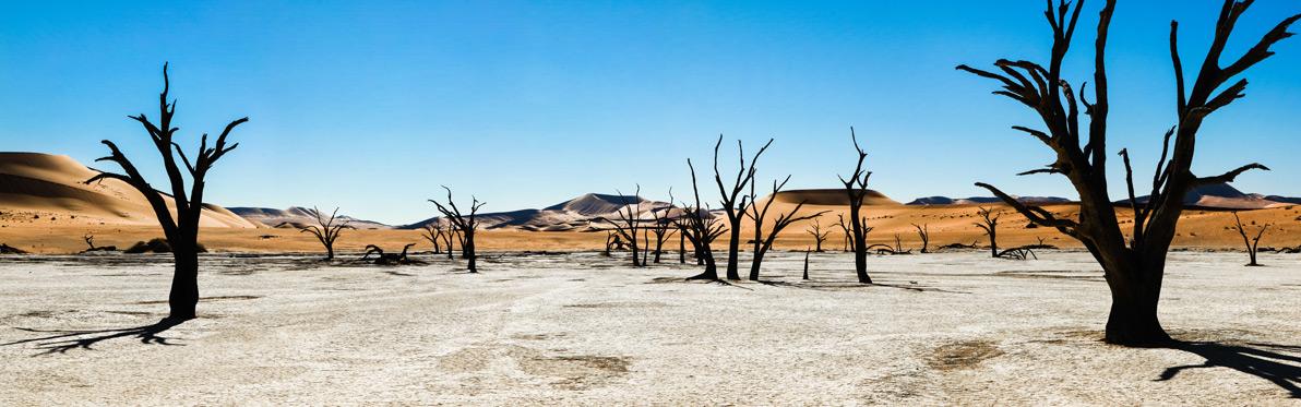 Voyage Découverte en Namibie - Une Terre de Mirages