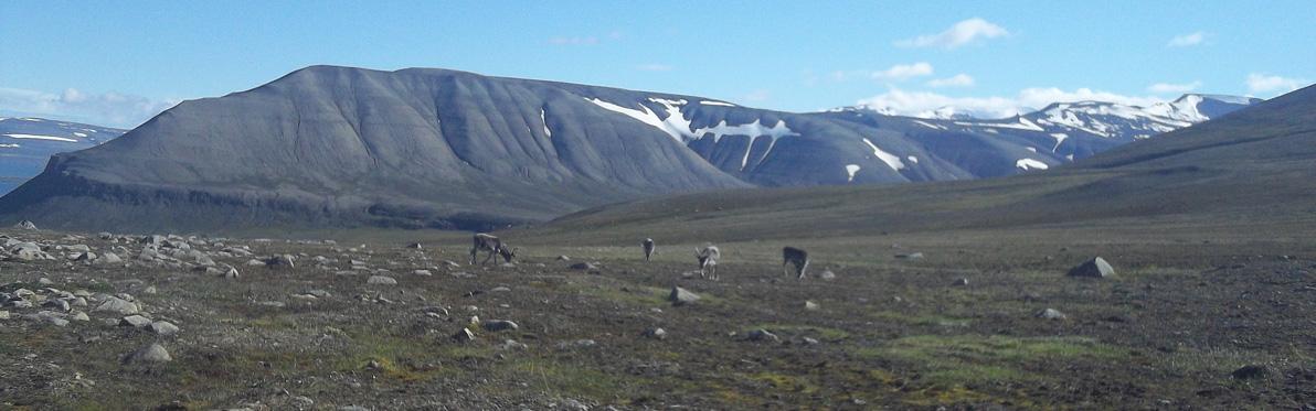 Voyage Découverte en Norvège - Svalbard …Au Nord, toujours plus au Nord
