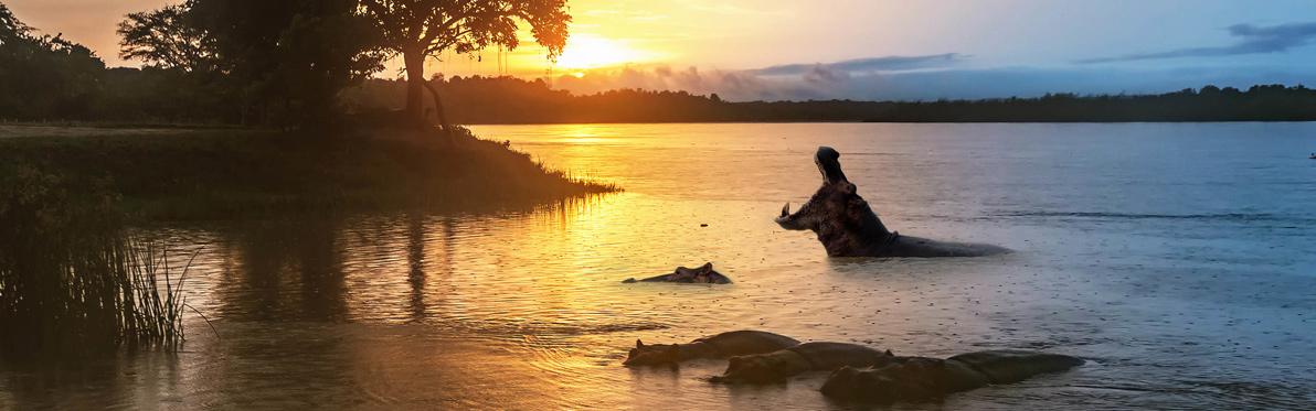 Voyage Découverte en Ouganda - L'Ouganda, la Perle de l'Afrique