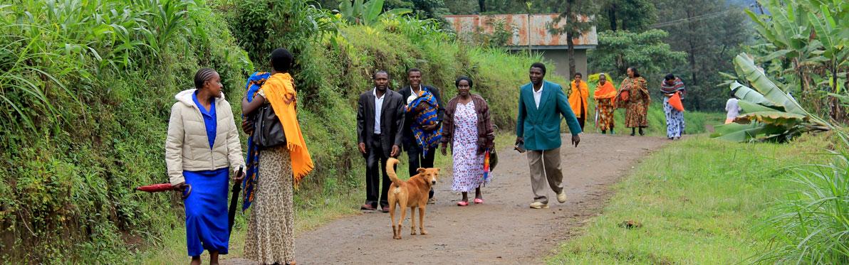 Voyage Découverte en Tanzanie - Rencontre avec les Chaggas
