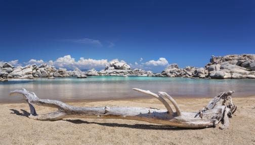 D'îles en criques en Corse du Sud