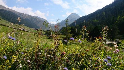 Entre lacs et montagnes à Andorre