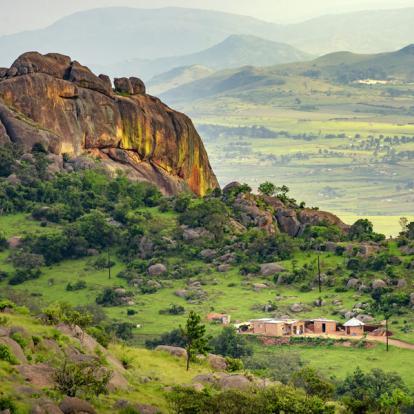 Safari en Afrique du Sud : Tour d'Horizon Hiver