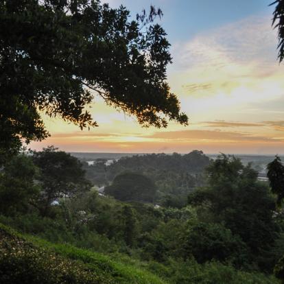Circuit en Malaisie : Terre de Contrastes