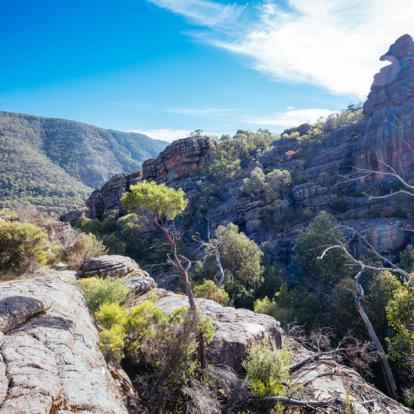 Voyage en Australie - Routes du Sud Australien