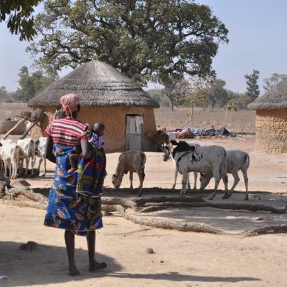 Voyage au Bénin : Fête de l'Igname à Savalou