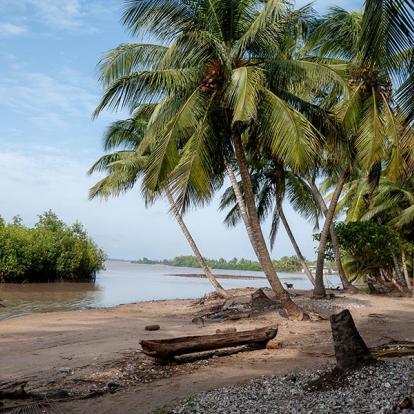 Séjour au Bénin : Voyage dans l'Ouest Africain