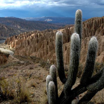 Voyage en Bolivie : Découverte des Andes et de l'Altiplano