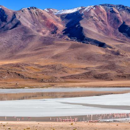Voyage en Bolivie : Entre montagnes et désert, sur les sentiers de la Bolivie
