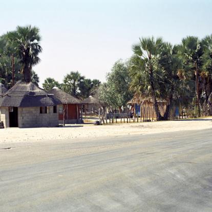 Voyage au Botswana : Les Déserts du Botswana