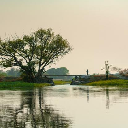 Voyage au Botswana : Safari Guidé au Botswana