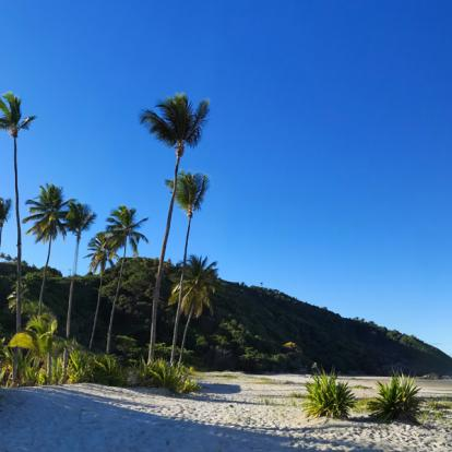 Voyage au Brésil : Bahia, Bahia