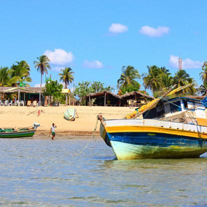 Circuit au Brésil : Surprenant Nordeste