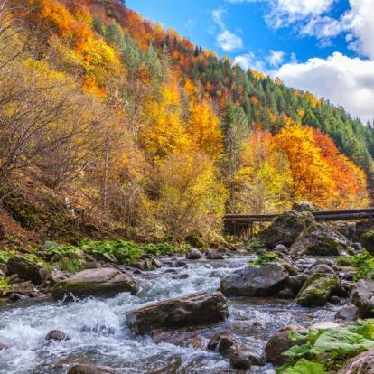 Voyage en Bulgarie : Le Charme de la Bulgarie