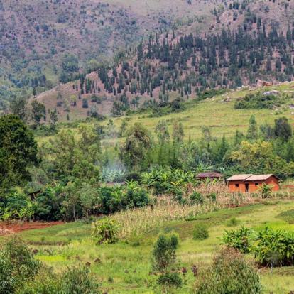 Circuit au Burundi : Merveilles d'Afrique Equatoriale