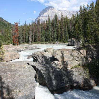 Circuit au Canada : Les Rocheuses en Camping