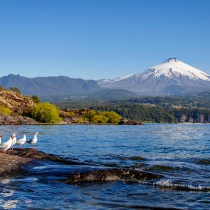 Circuit au Chili : Bien-être et Relaxation