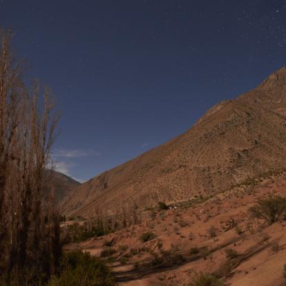 Voyage au Chili : Hauts plateaux et constellations d'étoiles