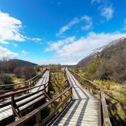 Circuit au Chili : Panoramas de Patagonie