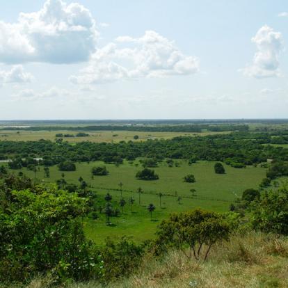 Circuit en Colombie: A la Découverte des Llanos et du Darien