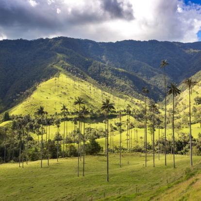 Circuit en Colombie: Colombie Aventure
