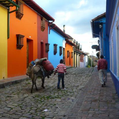 Voyage en Colombie: Colombie Express