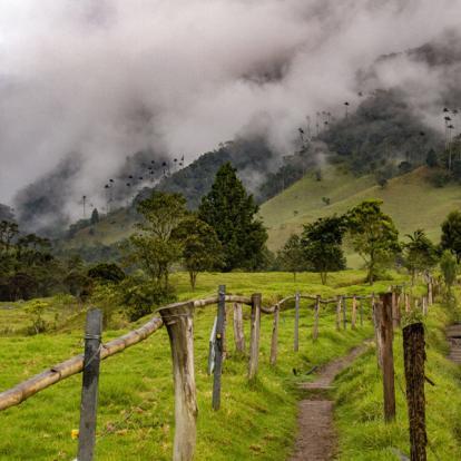 Circuit en Colombie: Les Sentiers Inconnus de Colombie