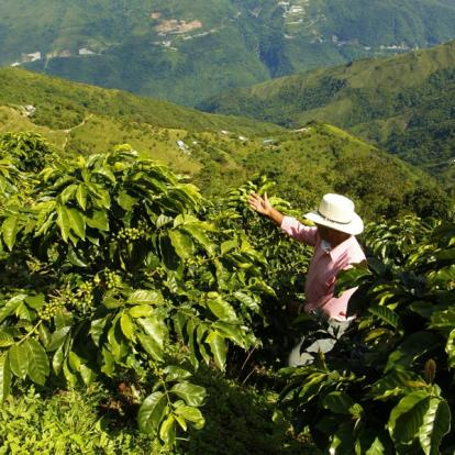 Voyage en Colombie - Passion Colombie
